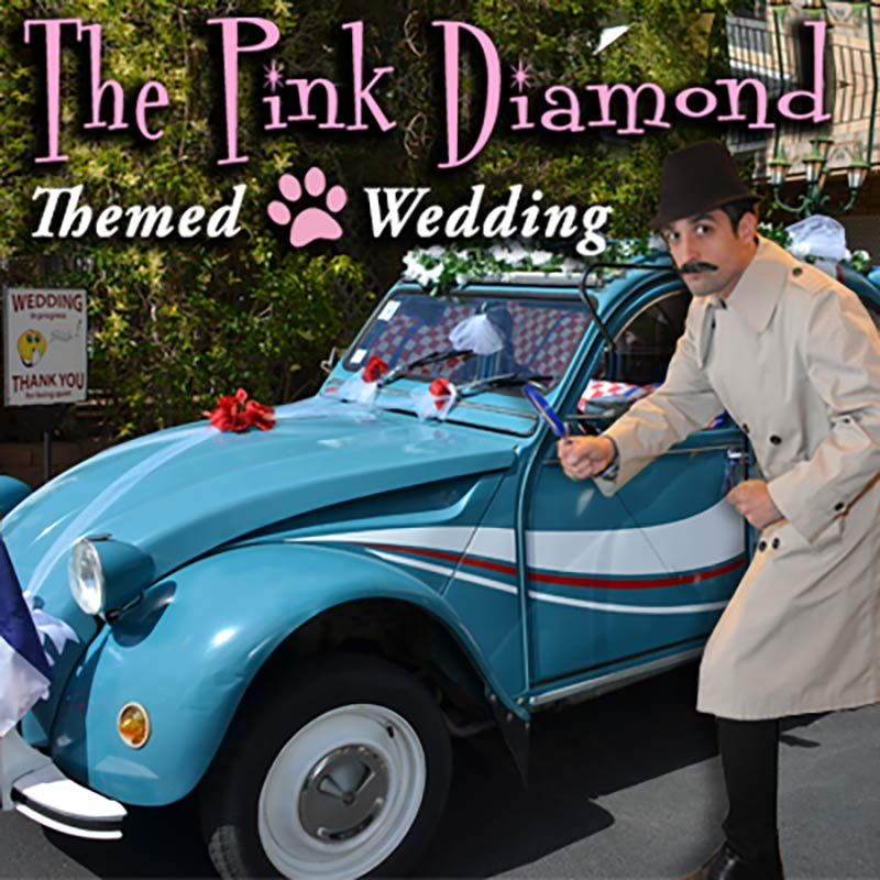 The Pink Diamond Las Vegas Wedding