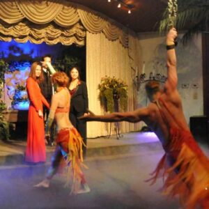 Viva Du Cirque Wedding
