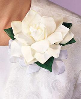 Gardenia Corsage