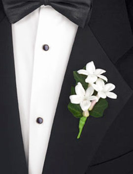 Stephanotis boutonniere las vegas wedding stephanotis boutonniere junglespirit Images