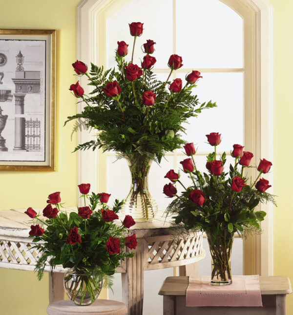 Variety of Rose - Six Rose